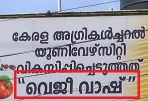 Veggie Shop in Malayalam