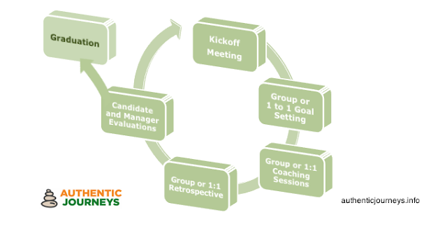 Authentic Journeys' team coaching model